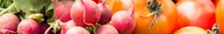 Antenne Radio – Eine Woche essen, was aus der Region kommt // Oldenburg
